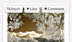Repin Like Comment buttons on Pinterest